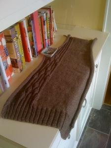 Mulled Cider Sweater back
